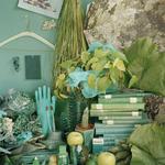 Green, by Sara Cwynar