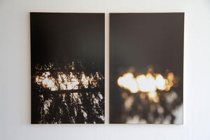 Jim Verberg: Untitled (Diptych), 2011: Two archival pigment prints, 40 x 60 inches each. Courtesy the artist.