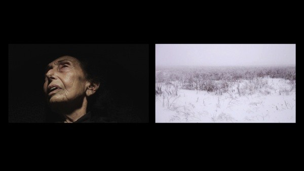 Ori Gersht: Will You Dance For Me (2011): Dual channel HD video projection with sound, 13 min 45 sec. Courtesy CRG, New York.