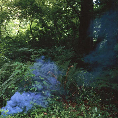 Karin Bubas: Smoke in Ultramarine Blue (2011): Archival pigment print, from the series Colour Fields.